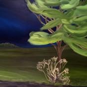 Roadside tree and weed, 2016